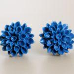 blueberry mums 1