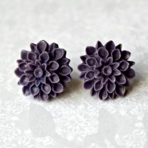 purple mums 1